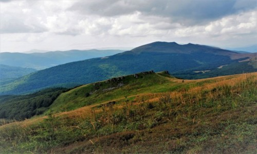 Zdjęcie POLSKA / Bieszczady / szlak Wołosate-Halicz-Tarnica / w kierunku Siodła...