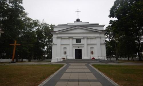 Zdjecie POLSKA / Lubelskie / Pratulin / Green Velo - sierpień 2020