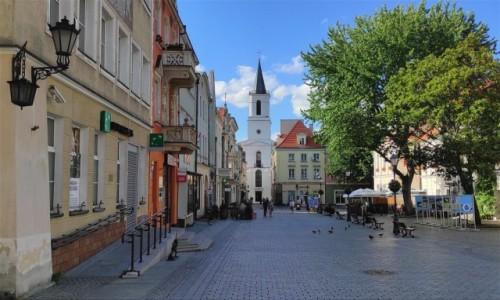 Zdjecie POLSKA / lubuskie / Zielona Góra / Na Rynku w Zielonej Górze