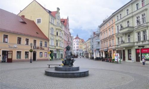 Zdjecie POLSKA / lubuskie / Zielona Góra / Pomnik Bachusa, Zielona Góra