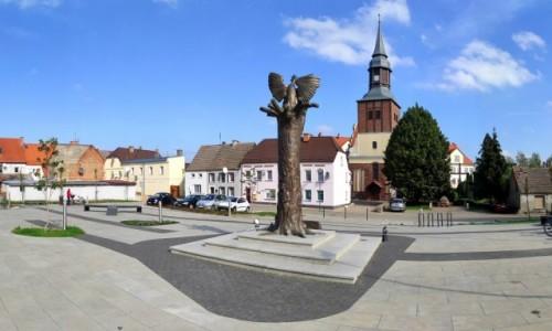 Zdjecie POLSKA / zachodniopomorskie / Pełczyce / Rynek w Pełczycach