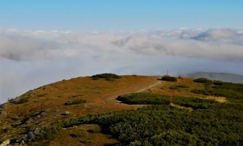 Zdjecie POLSKA / Beskidy / babia góra / powyżej chmur...