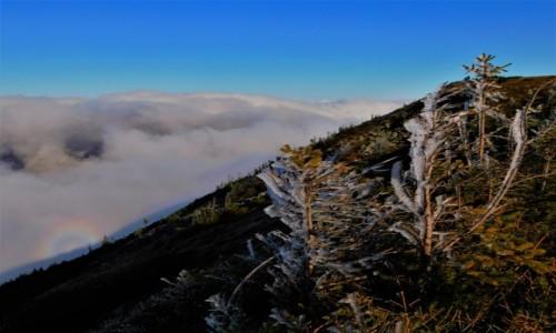 Zdjecie POLSKA / Beskidy / babia góra / Widmo Brockenu na Babiej Górze
