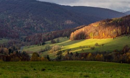 Zdjecie POLSKA / Bieszczady / Przełęcz Wyżnia / Liżąc góry