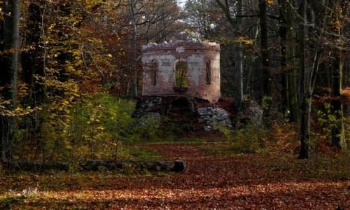 Zdjecie POLSKA / opolskie / Pokój / Salon wodny, ruina