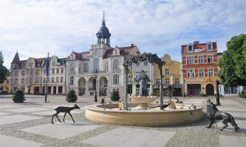 POLSKA / pomorskie / Wejherowo / Rynek w Wejherowie