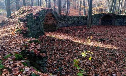 Zdjecie POLSKA / opolskie / Pokój / Elisium (ciemne ganki)z fragmentem nisz