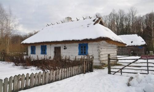 Zdjęcie POLSKA / podlaskie / Budy / Zimowe Podlasie. Chata w Budach