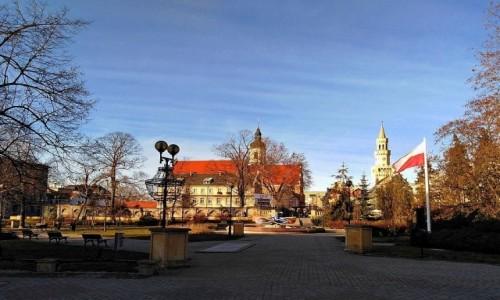 Zdjecie POLSKA / opolskie / Opole / Plac Wolności w grudniu.