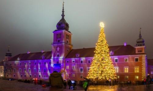 Zdjecie POLSKA / Warszawa / / / Na Placu Zamkowym