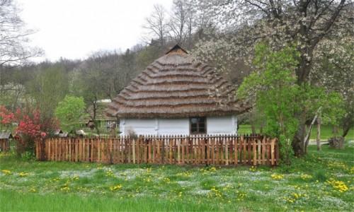 POLSKA / podkarpackie / Sanok / Chata w Muzeum Budownictwa Ludowego w Sanoku