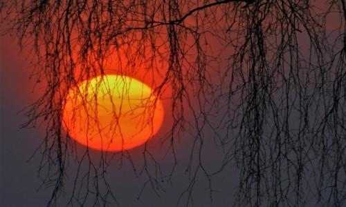 POLSKA / dolina karpia / Spytkowice / Wschód słońca -17 stopni