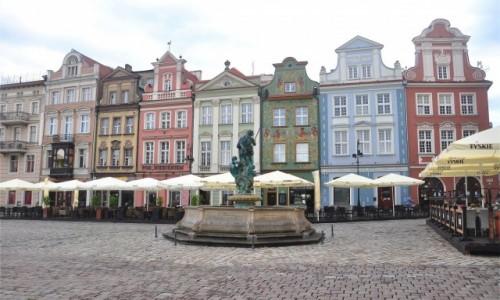 POLSKA / wielkopolskie / Poznań / Kamienice przy Rynku w Poznaniu