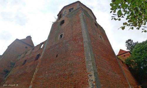 POLSKA / Iława / Szymbark koło Iławy. / Szymbark - Ruiny zamku (na życzenie