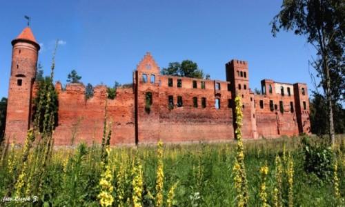 Zdjecie POLSKA / warmińsko-mazurskie / Szymbark koło Iławy. / Szymbark - Ruiny zamku (na życzenie