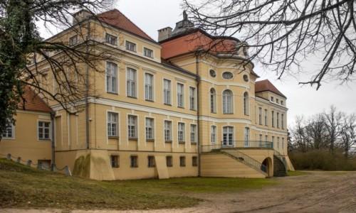Zdjecie POLSKA / wielkopolskie / Rogalin / Pałac w Rogalinie