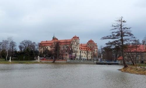 Zdjecie POLSKA / opolskie / Niemodlin / Zamek, widok z wyspy