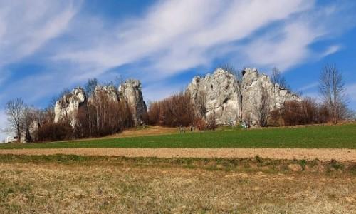 POLSKA / Jura Krakowsko-Częstochowska / Słoneczne Skałki w Jerzmanowicach / Wiosna na Jurze