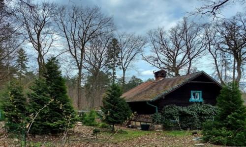POLSKA / opolskie / Lipno / Domek w lesie