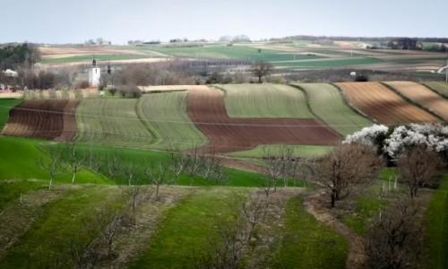 Zdjęcie POLSKA / Ponidzie / okolice Czarnocina / Ponidzie