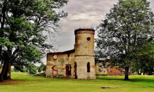 Zdjecie POLSKA / województwo lubelskie / Dołhobyczów / Pałac Rastawieckiego z XIX wieku -pozostałości po stajni z wozownią