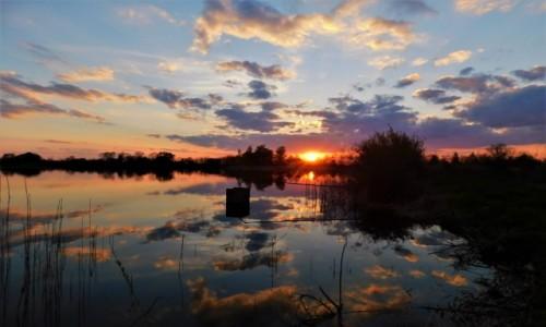 POLSKA / dolina karpia / stawy / Zachód słońca nad stawami