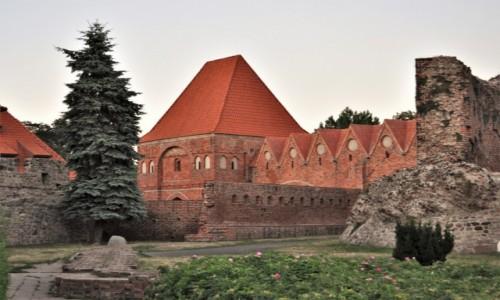 POLSKA / Kujawsko Pomorskie / Toruń / Toruń, ruiny zamku krzyżackiego