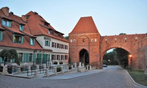 Zdjecie POLSKA / Kujawsko Pomorskie / Toruń / Toruń, ruiny zamku krzyżackiego