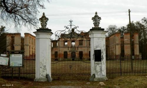 Zdjecie POLSKA / warmińsko-mazurskie / pow.iławski. / Kamieniec - Ruiny Pałacu oraz gniazdko Napoleona i Pani Walewskiej.