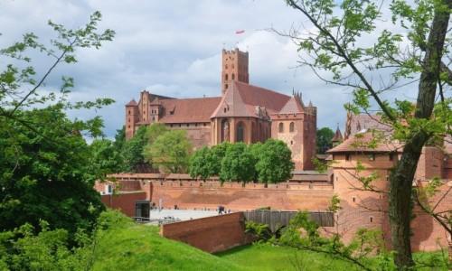 Zdjecie POLSKA / pomorskie / Malbork / Zamek w Malborku