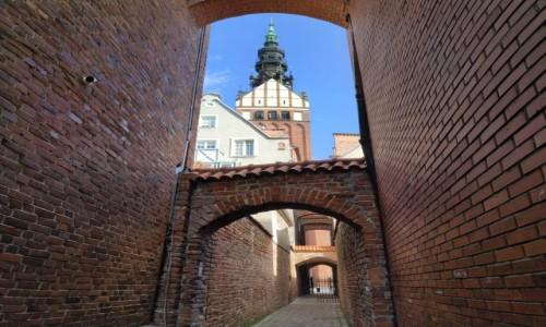 Zdjęcie POLSKA / warmińsko-mazurskie / Elbląg / Ścieżka Kościelna w Elblągu
