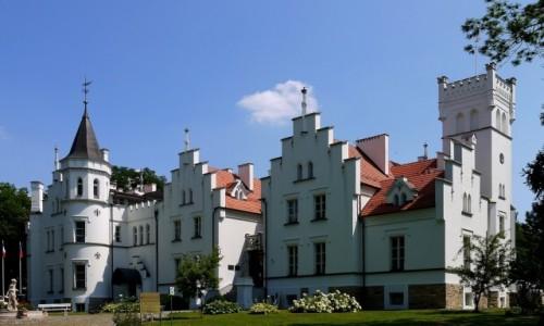 Zdjecie POLSKA / opolskie / Sulisław / Pałac