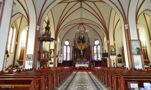 Zdjecie POLSKA / woj.podlaskie. / pow. sokólski. / Krynki - kościół św. Anny - wnętrze.