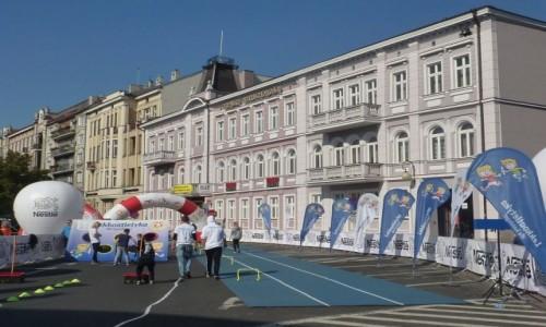 Zdjęcie POLSKA / Wielkopolska / Kalisz / Kalisz ,   Międzynarodowy Uliczny Bieg Ptolemeusza .