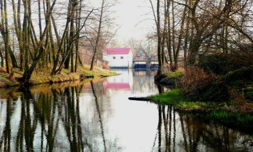 Zdjęcie POLSKA / Mazowsze / ok.Skierniewic / rzeka