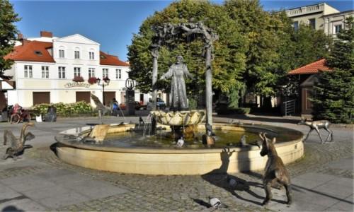 Zdjecie POLSKA / Kaszuby / Wejherowo / Wejherowo, rynek, fontanna