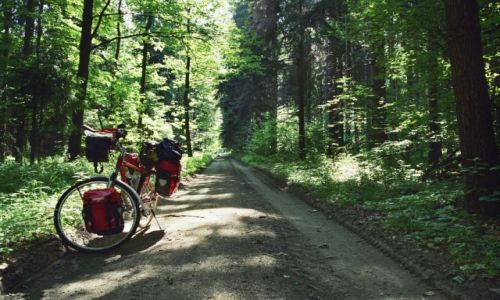 POLSKA / Kotlina Klodzka / Lasy koło Wałbrzycha / Na szlaku.