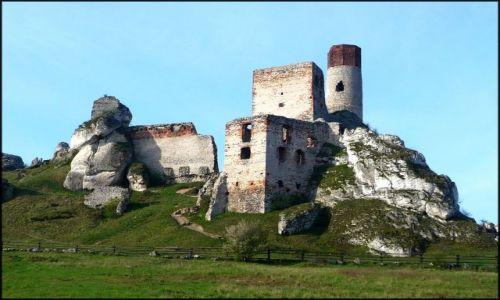 Zdjecie POLSKA / Jura / Jura / na szlaku Orlich Gniazd