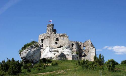 Zdjecie POLSKA / Jura / Mirów / Mirów