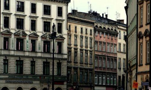 Zdjecie POLSKA / brak / krakow / krakowski rynek