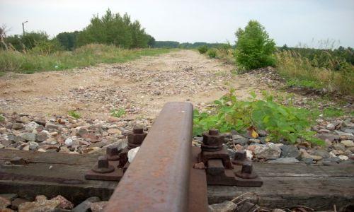 POLSKA / Nadburzanski Park Krajobrazowy / Treblinka. / Zlikwidowana linia kolejowa.