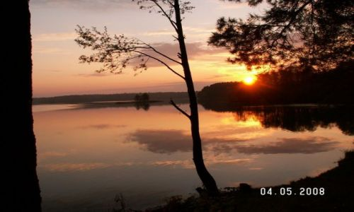 Zdjęcie POLSKA / Augustów / Jezioro w Augustowie / Wschód słońca nad Jeziorem