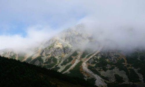 Zdjecie POLSKA / Tatry / Dolina Kościeliska / Okolice Koziego Wierchu