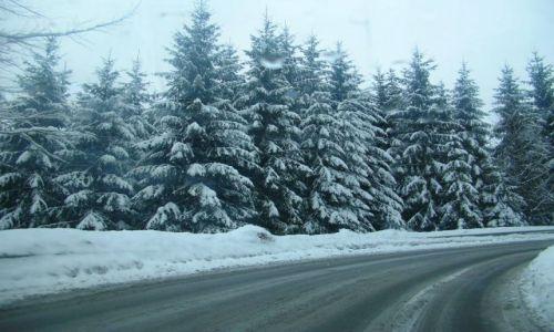 Zdjęcie POLSKA / Śląsk / Istebna / Zima w Beskidach