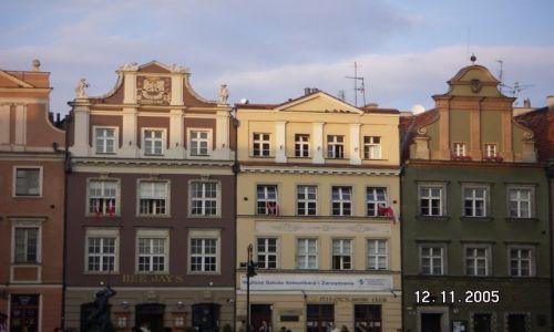 Zdjecie POLSKA / Poznań / dzień św. Marcina / Poznań