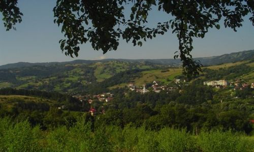 Zdjecie POLSKA / Beskidy / �omnica / w drodze na �ab