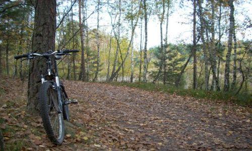 POLSKA / Mazowsze / Mazowiecki Park Krajobrazowy / Na rowerowym szlaku