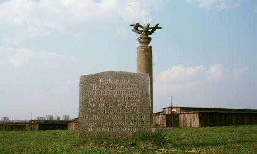 Zdjęcie POLSKA / Lublin / Majdanek / Kolumna Trzech Orłów