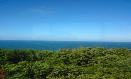 Zdjęcie POLSKA / brak / Rozewie / Widok na morze
