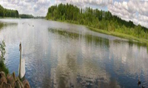 Zdjęcie POLSKA / Wielkopolska / Karpicko / Panorama